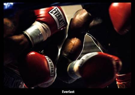 Everlast Box  kesztyűk